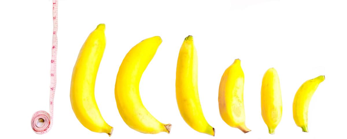 Разные размеры пенисов