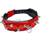 Ошейник DS Fetish Leather Collar Jewel & Spike, красный - Фото №1