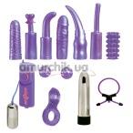 Набор из 12 предметов Dirty Dozen, фиолетовый - Фото №1