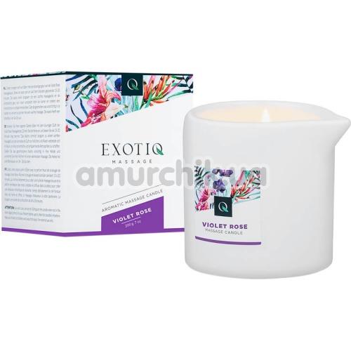 Массажная свеча Exotiq Massage Violet Rose - роза, 200 мл - Фото №1