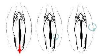 Женский интимный пирсинг