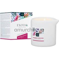 Массажная свеча Exotiq Massage Bamboo Orchid -  бамбук и орхидея, 200 мл - Фото №1