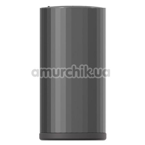 Мастурбатор Lelo F1s Prototype, черный
