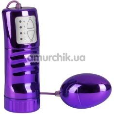 Виброяйцо Brilliant Vibro-Bullet 5.5 см, фиолетовое