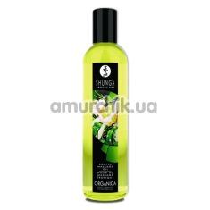 Купить Массажное масло Shunga Erotic Massage Oil Exotic Green Tea - экзотический зеленый чай, 250 мл