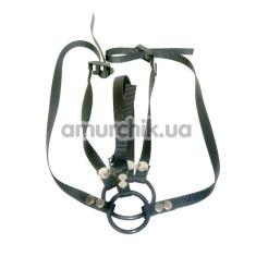 Пояс с кольцом для пениса Reversible Cock Ring Harness - Фото №1