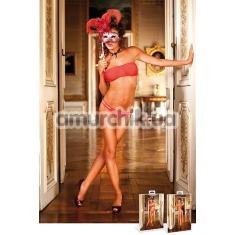 Комплект Mesh Bikini Set: бюстгальтер + трусики-стринги - Фото №1