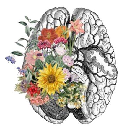 Тренируйте мозг с удовольствием!
