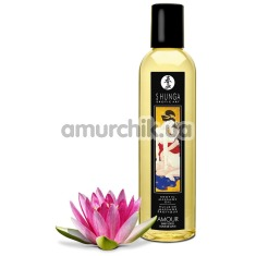 Массажное масло Shunga Erotic Massage Oil Amour Sweet Lotus - лотос, 250 мл - Фото №1