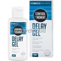 Гель-пролонгатор Intimate Control The Moment Delay Gel, 85 мл