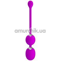Вагинальные шарики с вибрацией Pretty Love Werner, фиолетовые