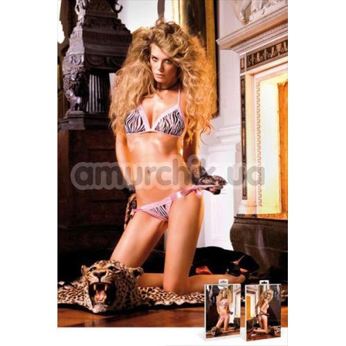 Комплект Zebra Bikini-Set With Lacing: бюстгальтер + трусики-стринги - Фото №1