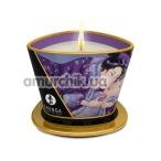 Свеча для массажа Shunga Massage Candle Exotic Fruits - экзотические фрукты, 170 мл - Фото №1