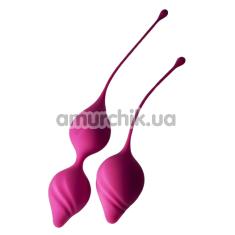Набор вагинальных шариков Rocks-Off Feranti Hold Me Tight, розовый - Фото №1