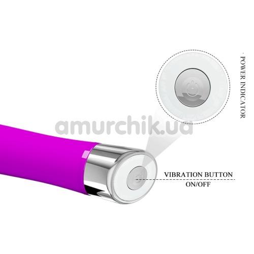 Вибратор Pretty Love Sampson, фиолетовый