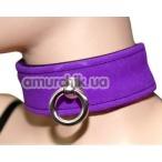 Ошейник с кольцом для поводка Spade, фиолетовый - Фото №1
