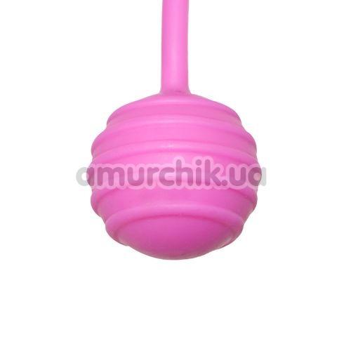 Вагинальные шарики Easy Toys Pleasure Balls, розовые
