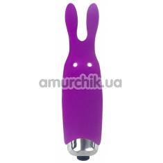 Клиторальный вибратор Adrien Lastic Pocket Vibe Rabbit, фиолетовый - Фото №1