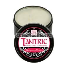 Cвеча для массажа с феромонами Tantric Pomegranate Ginger - гранат-имбирь, 113 мл - Фото №1