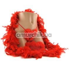 Купить Набор для женщин Amour Hollywood Housewife Kit