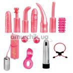 Набор из 12 предметов Dirty Dozen, розовый - Фото №1